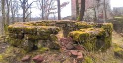 Tempête : des dégâts forestiers au Nouveau-Windstein